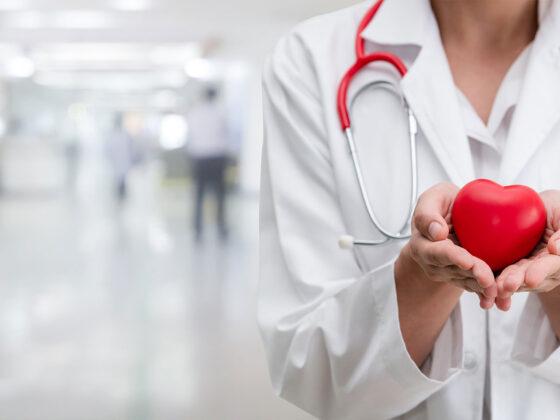 Doctor handling heart